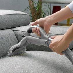 professional rug and carpet cleaners